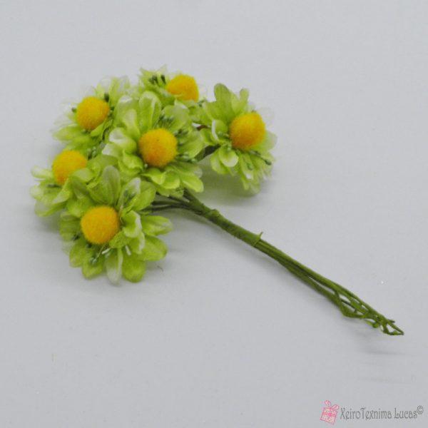 Λαχανί διακοσμητικά λουλούδια