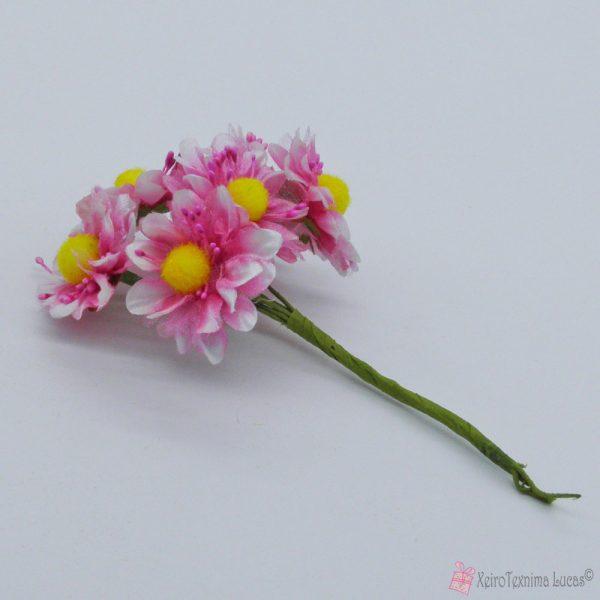 Φούξια διακοσμητικά λουλούδια