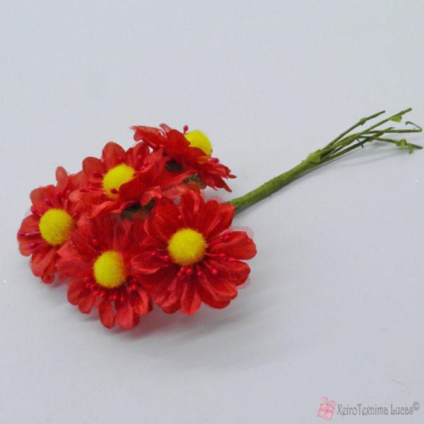Κόκκινα διακοσμητικά λουλούδια
