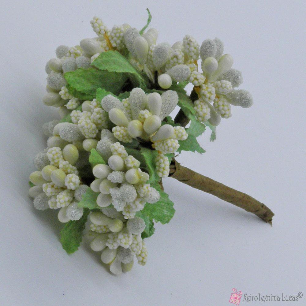 εκρού λουλούδια