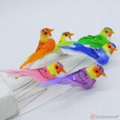 Διακοσμητικά πουλάκια σε διάφορα χρώματα